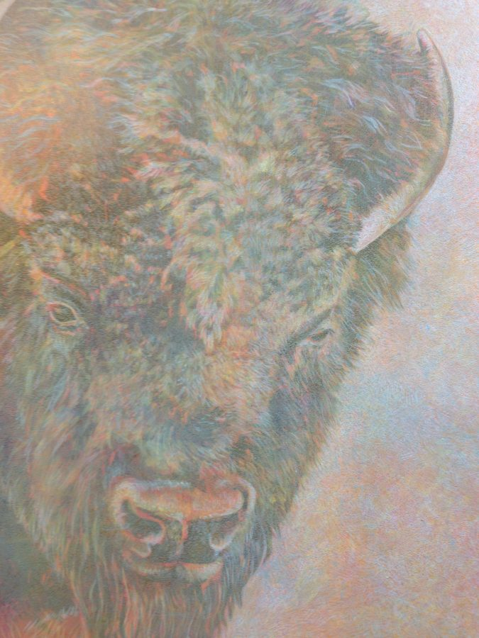 buffalo, egg tempera, oil, miscue