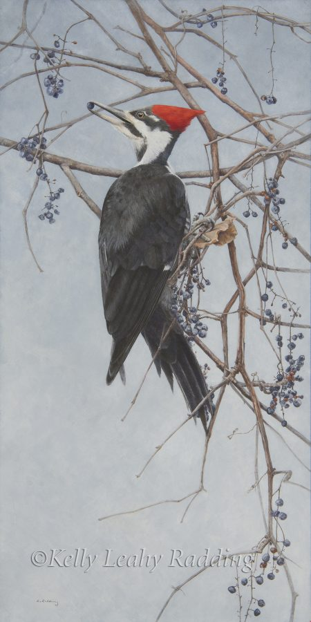 Kelly Leahy Radding, casein, pileated woodpecker, A Winter's Call