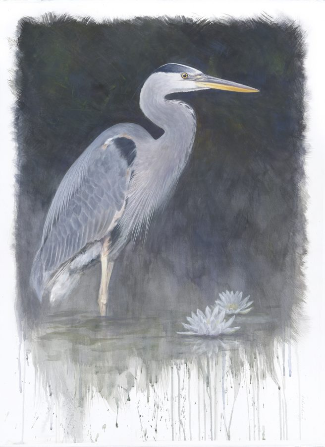 Kelly Leahy Radding, Great Blue Heron, casein