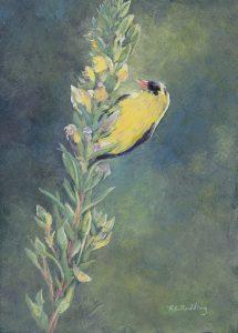 goldfinch, casein, panel, Kelly Leahy Radding
