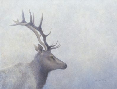 Loyalty, Kelly Leahy Radding, Elk, Tule Elk, egg tempera